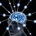 22212465 - brain, and pulses  process of human thinking
